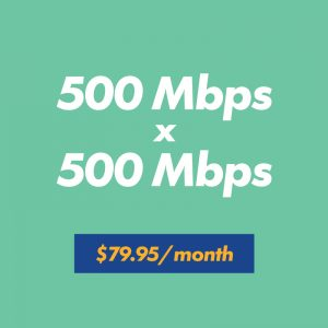 500 mbps x 500 mbps for $79.95 per month